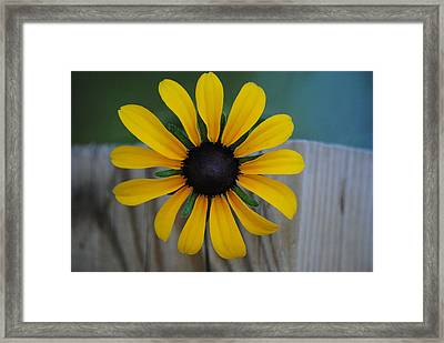 Black Eye Framed Print