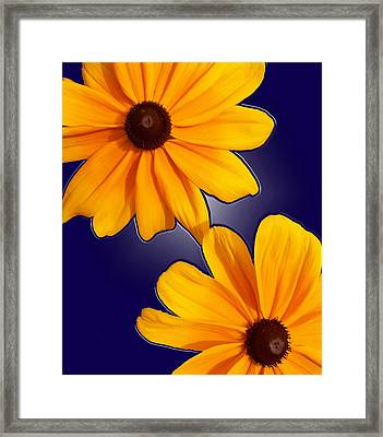 Black-eyed Susans On Blue Framed Print