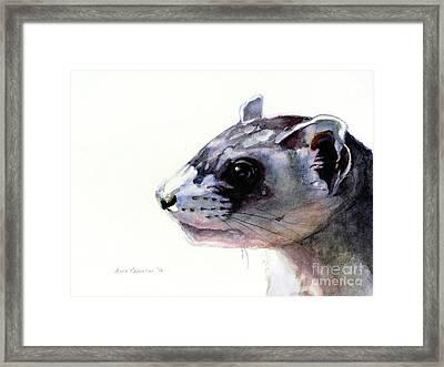 Black-footed Ferret Framed Print by Maria Kaprielian