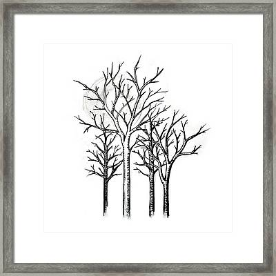 Black Forest Framed Print