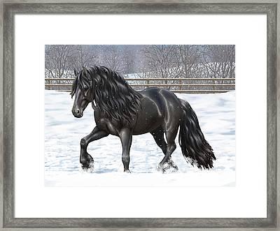 Black Friesian Horse In Snow Framed Print