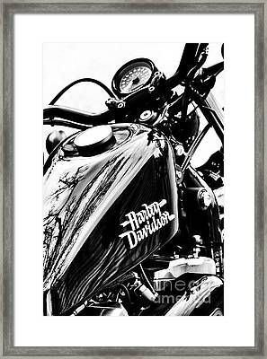 Black Harley Framed Print