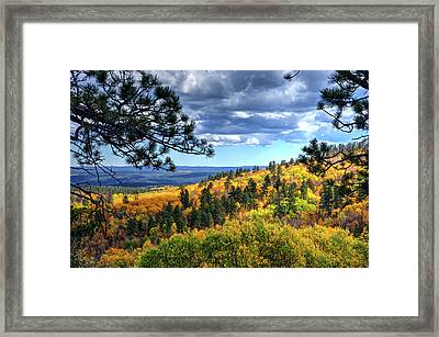 Black Hills Autumn Framed Print
