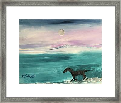 Black Horse Follows The Moon Framed Print