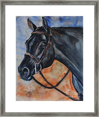 Black Horse Head Framed Print
