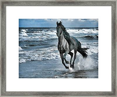 Black Horse Running Through Water Framed Print by Lanjee Chee