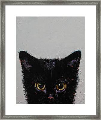Black Kitten Framed Print by Michael Creese