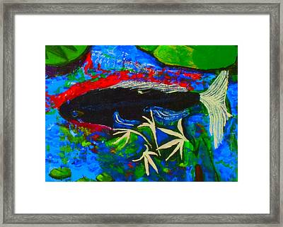 Framed Print featuring the painting Black Koi Closeup by Angela Annas