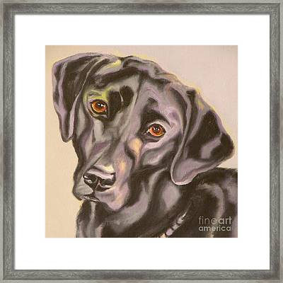 Black Lab Aint No Cure For Love Framed Print by Susan A Becker