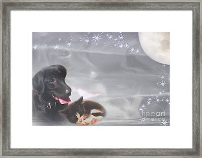 Black Lab And Kitten Collage Framed Print by Judy Brand