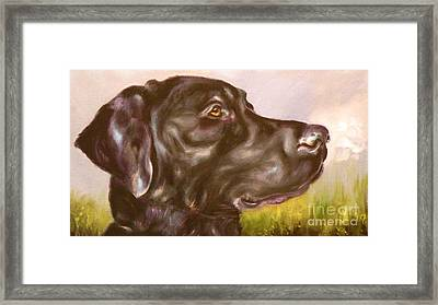 Black Lab In The Field Framed Print by Susan A Becker