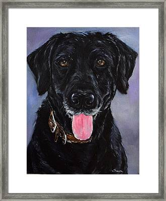 Black Lab Painting Framed Print by Sun Sohovich