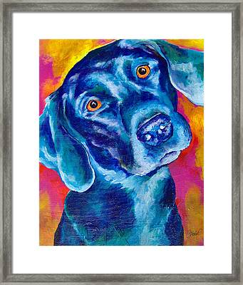 Black Lab Pop Art Framed Print