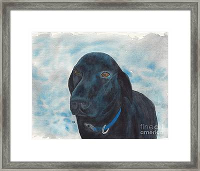 Black Labrador Retriever With Copper Eyes Framed Print