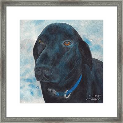Black Labrador With Copper Eyes Portrait II Framed Print