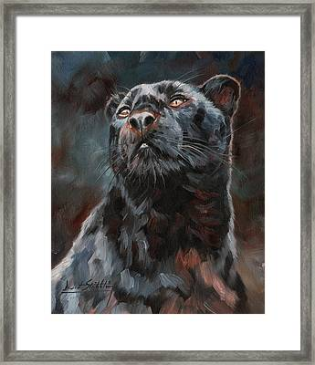 Black Leopard Framed Print by David Stribbling