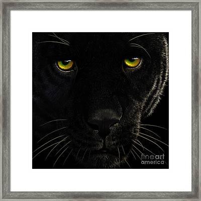 Black Leopard Framed Print by Jurek Zamoyski