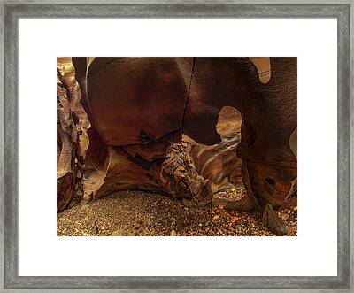 Black Magic Canyon Form Framed Print by Leland D Howard