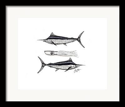 Black Marlin Mixed Media Framed Prints