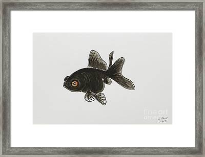 Black Moor Framed Print