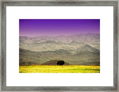 Black Mountains Az Framed Print