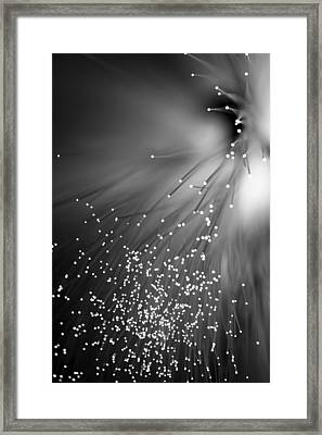 Framed Print featuring the photograph Black Night by Dazzle Zazz