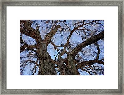 Framed Print featuring the painting Black Oaks by Mark Greenberg