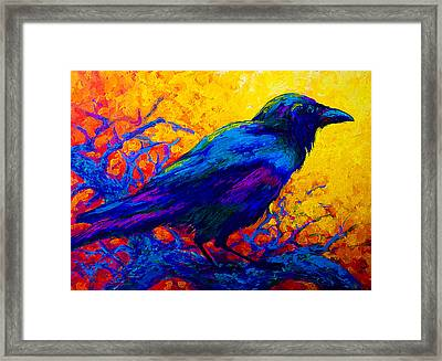 Black Onyx - Raven Framed Print by Marion Rose
