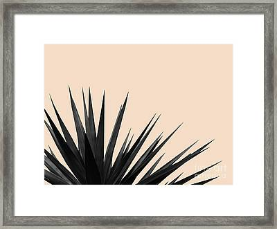 Black Palms On Pale Pink Framed Print