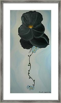 Black Pansi Framed Print by Marinella Owens