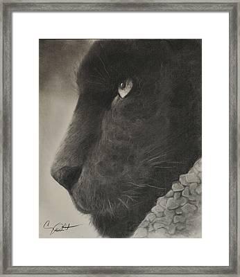 Black Panther  Framed Print by Adrian Pickett Jr
