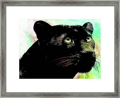 Black Panther Animal Art Framed Print