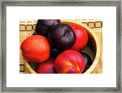 Black Plums And Nectarines In A Wooden Bowl Framed Print