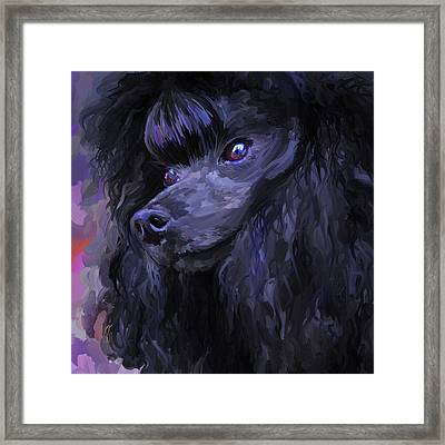 Black Poodle - Square Framed Print