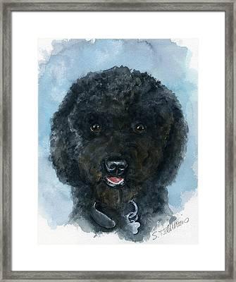 Black Poodle Puppy Framed Print
