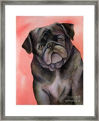 Black Pug Framed Print by Cherilynn Wood