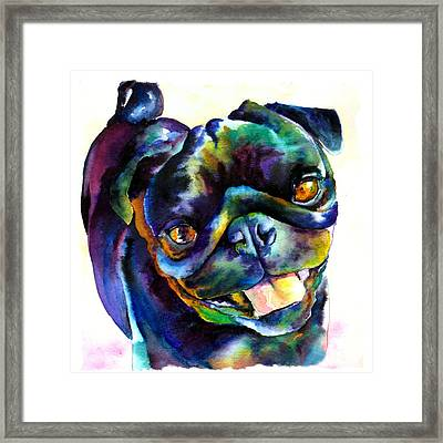 Black Pug Framed Print