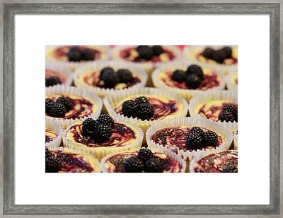 Black Raspberry Cupcakes Framed Print by Lori Deiter
