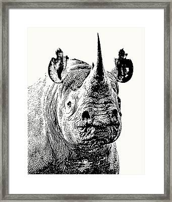 Black Rhino Portrait Framed Print