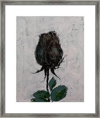 Black Rosebud Framed Print by Michael Creese