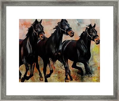 Black Running Horses Framed Print by Gull G