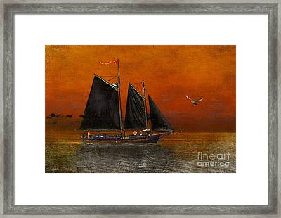 Black Sails In The Sunset Framed Print by Chris Armytage