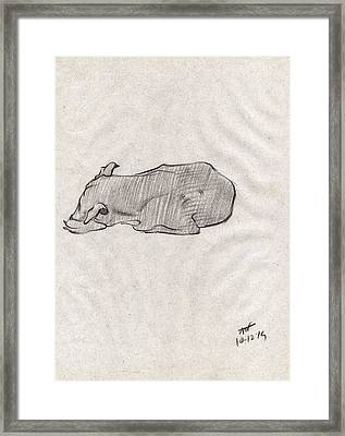 Black Sketch Of A Dog Sleeping From Front Left  Framed Print by Makarand Joshi
