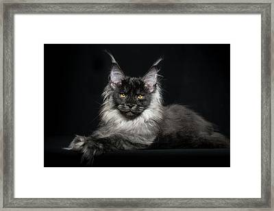 Black Smoke Boy Framed Print