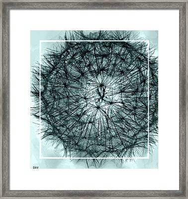 Black Sphere Framed Print by Debra     Vatalaro