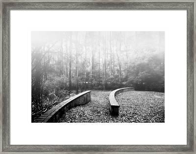Black Spur Framed Print by Mihai Florea