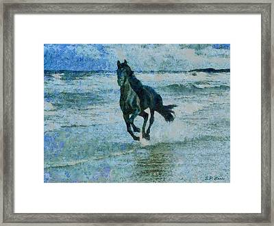 Black Stallion Framed Print by Elizabeth Coats