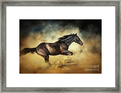 Black Stallion Horse Galloping Like A Devil Framed Print