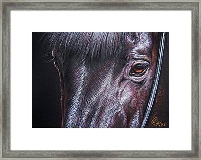 Black Stallion Framed Print by Elena Kolotusha