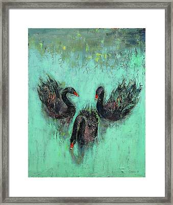 Black Swans Framed Print by Michael Creese